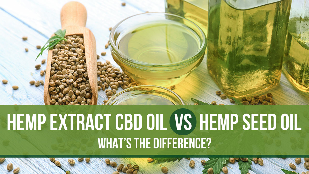 Hemp Extract CBD Oil Vs Hemp Seed Oil: What's the Difference?
