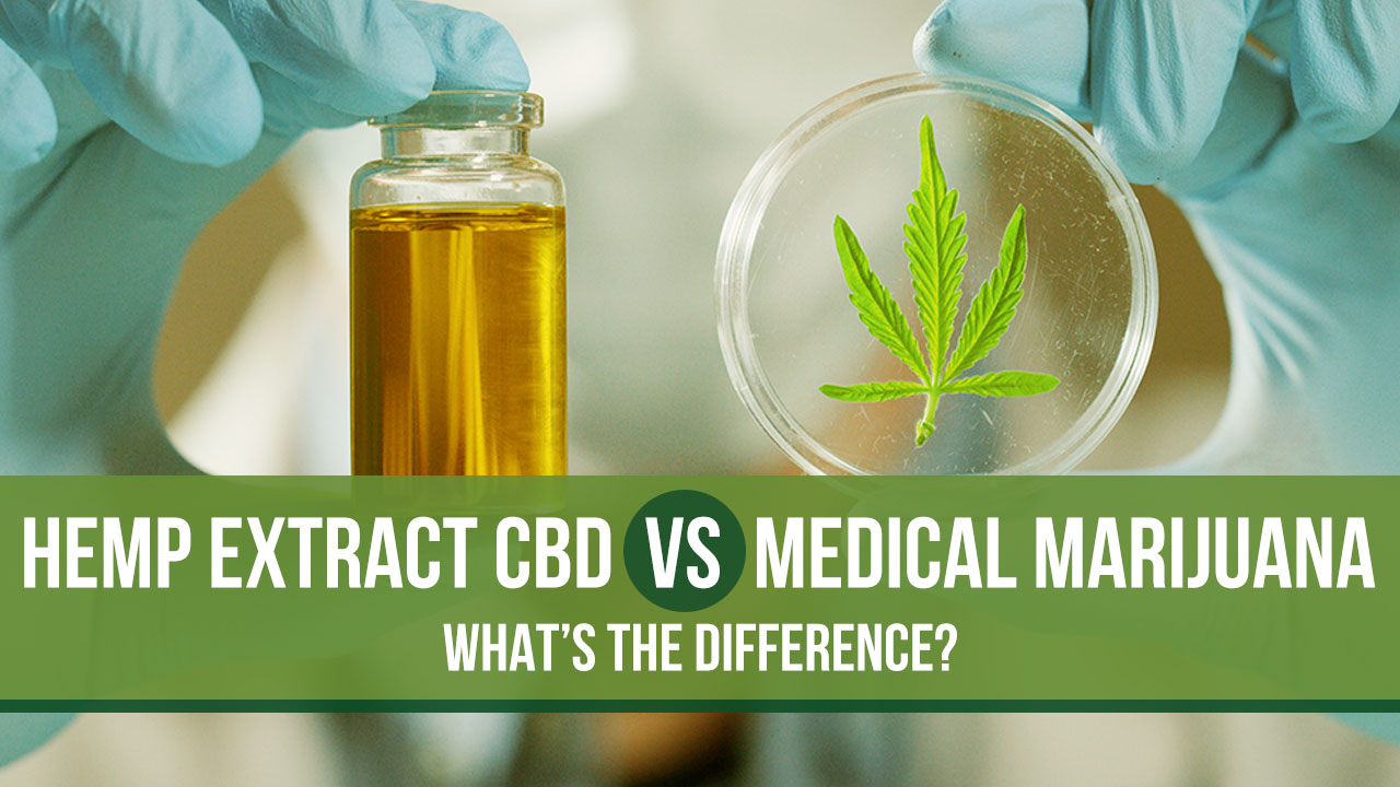 Hemp Extract CBD Vs. Medical Marijuana: What's the Difference?