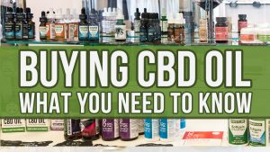 What You Need to Know Before Buying CBD Oil