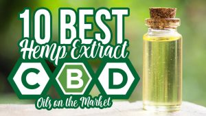 10 Best Hemp Extract CBD Oils on the Market