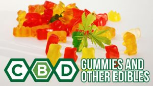 CBD Gummies and Other Edibles: What You Need to Know