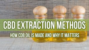 CBD Extraction Methods: How CBD Oil is Made and Why It Matters