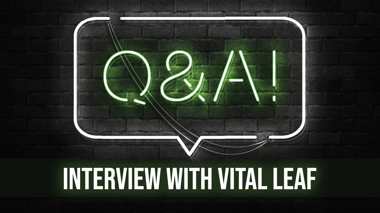 Interview With Christina Sasser, CEO and Founder of Vital Leaf