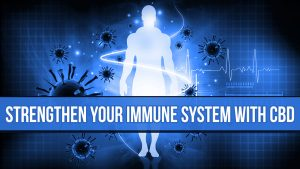 How to Strengthen Your Immune System with CBD